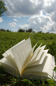 open book lying in the grass with a blue sky overhead