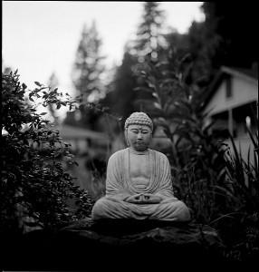 Guerneville Buddha statue, meditation, mindfulness
