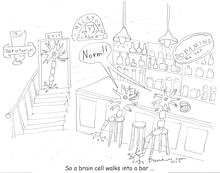 Brain cell walks into a bar (Cartoon - Branain)