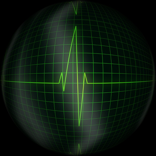 a heart monitor screen, one example of personal medical information