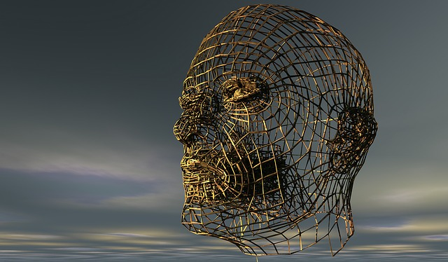 Wire sculpture of a human head against a gray sky