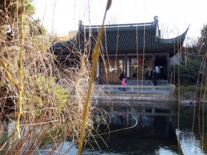 Slow down: Pond and grasses at Portland Chinese Gardens (by Shawn Radcliffe)