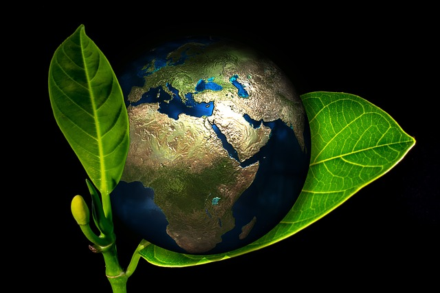 Global poetry | Illustration of the earth as an egg resting on a leaf (Pixabay)